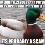"Good Advice mallard | IF SOMEONE TELLS YOU THAT A POTENTIAL BUSINESS OPPORTUNITY  ""IS NOT A SCAM"" IT'S PROBABLY A SCAM 