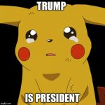 Pikachu crying | TRUMP IS PRESIDENT | image tagged in pikachu crying | made w/ Imgflip meme maker