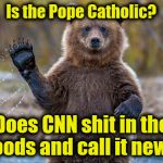 Is CNN Fake News? | Is the Pope Catholic? Does CNN shit in the woods and call it news? | image tagged in bears,cnn fake news,cnn sucks,stupid liberals | made w/ Imgflip meme maker