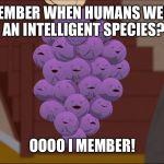 Member Berries | Know Your Meme |Member Meme