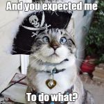 Spangles Meme | And you expected me To do what? | image tagged in memes,spangles | made w/ Imgflip meme maker