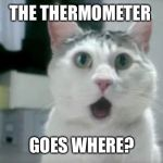 OMG Cat Meme | THE THERMOMETER GOES WHERE? | image tagged in memes,omg cat | made w/ Imgflip meme maker