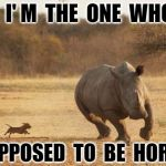 animals | HEY,  I' M  THE  ONE  WHO  IS SUPPOSED  TO  BE  HORNY | image tagged in animals | made w/ Imgflip meme maker