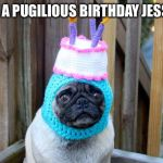birthday pug | HAVE A PUGILIOUS BIRTHDAY JESSICA! | image tagged in birthday pug | made w/ Imgflip meme maker