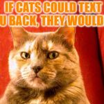 Suspicious Cat Meme | IF CATS COULD TEXT YOU BACK, THEY WOULDN'T. | image tagged in memes,suspicious cat,cats,funny,funny memes,texting | made w/ Imgflip meme maker