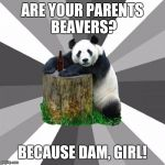 Pickup Line Panda Meme | ARE YOUR PARENTS BEAVERS? BECAUSE DAM, GIRL! | image tagged in memes,pickup line panda | made w/ Imgflip meme maker