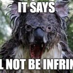 Angry Koala Meme | IT SAYS SHALL NOT BE INFRINGED! | image tagged in memes,angry koala | made w/ Imgflip meme maker