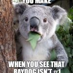 Suprised Koala | THAT FACE YOU MAKE WHEN YOU SEE THAT RAYDOG ISN'T #1 ON THE LEADER BOARD | image tagged in suprised koala | made w/ Imgflip meme maker