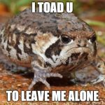 Grumpy Toad Meme | I TOAD U TO LEAVE ME ALONE | image tagged in memes,grumpy toad | made w/ Imgflip meme maker