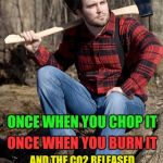 Solemn Lumberjack Meme | CHOP YOUR OWN WOOD AND IT WILL WARM YOU THREE TIMES AND THE CO2 RELEASED FROM BURNING WILL CONTRIBUTE TO GLOBAL WARMING ONCE WHEN YOU BURN I | image tagged in memes,solemn lumberjack | made w/ Imgflip meme maker