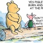 winnie the pooh and piglet | YES PIGLET WE'LL BURN AND PILLAGE AT THE PROTEST DON'T FORGET THAT TIGGER WANTS A NEW TV | image tagged in winnie the pooh and piglet | made w/ Imgflip meme maker