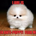 Try me! | I ARE IS TEH ANTI-PUPPY!  FEAR ME! | image tagged in derp doge,memes,funny,funny memes,dank memes | made w/ Imgflip meme maker