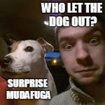 u ain't nuthin but a hound dog | WHO LET THE DOG OUT? SURPRISE MUDAFUGA | image tagged in jacksepticeye | made w/ Imgflip meme maker