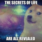 Space Doge | THE SECRETS OF LIFE ARE ALL REVEALED | image tagged in space doge | made w/ Imgflip meme maker