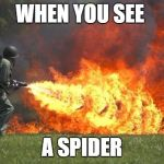 flamethrower | WHEN YOU SEE A SPIDER | image tagged in flamethrower | made w/ Imgflip meme maker