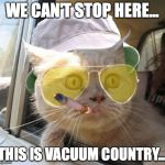 Fear And Loathing Cat Meme | WE CAN'T STOP HERE... THIS IS VACUUM COUNTRY... | image tagged in memes,fear and loathing cat | made w/ Imgflip meme maker