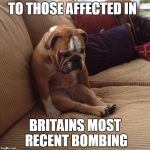 Commiserations to the families affected  | TO THOSE AFFECTED IN BRITAINS MOST RECENT BOMBING | image tagged in bulldogsad,terrorist attack,uk,sad news,rip | made w/ Imgflip meme maker