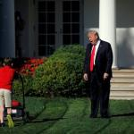 Trump Lawn Mower meme