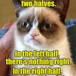 Grumpy Cat Meme | Your brain has two halves. In the left half,  there's nothing right. In the right half, there's nothing left. | image tagged in memes,grumpy cat | made w/ Imgflip meme maker