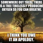 Tree of Life | SOMEWHERE OUT THERE, THERE IS A TREE TIRELESSLY PRODUCING OXYGEN SO YOU CAN BREATHE. I THINK YOU OWE IT AN APOLOGY. | image tagged in tree of life | made w/ Imgflip meme maker