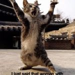kung fu kitten | No, no, no. I never said I was insane... I just said that women with psychiatric histories refuse to date me. There's a big difference. | image tagged in kung fu kitten | made w/ Imgflip meme maker