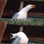 Inhaling Seagull Meme Generator - Imgflip