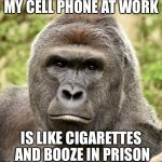 Har | MY CELL PHONE AT WORK IS LIKE CIGARETTES AND BOOZE IN PRISON | image tagged in har | made w/ Imgflip meme maker