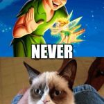 Grumpy Cat Does Not Believe Meme | OFF TO NEVER MIND NEVER | image tagged in memes,grumpy cat does not believe,grumpy cat | made w/ Imgflip meme maker