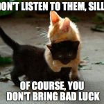 Happy Friday 13th! | DON'T LISTEN TO THEM, SILLY OF COURSE, YOU DON'T BRING BAD LUCK | image tagged in kitten hug | made w/ Imgflip meme maker