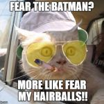 Fear And Loathing Cat Meme | FEAR THE BATMAN? MORE LIKE FEAR MY HAIRBALLS!! | image tagged in memes,fear and loathing cat | made w/ Imgflip meme maker