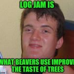 LOG JAM IS WHAT BEAVERS USE IMPROVE THE TASTE OF TREES | image tagged in memes,10 guy,funny,beavers,log jam,trees | made w/ Imgflip meme maker