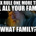 Angry Dumbledore Meme | SAY SOX RULE ONE MORE TIME I'LL KILL ALL YOUR FAMILY WHAT FAMILY? | image tagged in memes,angry dumbledore | made w/ Imgflip meme maker