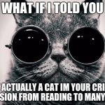 Morpheus Cat | WHAT IF I TOLD YOU IM NOT ACTUALLY A CAT IM YOUR CRIPPLING DEPRESSION FROM READING TO MANY MEMES | image tagged in morpheus cat | made w/ Imgflip meme maker