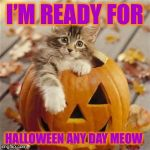 It'll be Halloween any day Meow! | I'M READY FOR HALLOWEEN ANY DAY MEOW | image tagged in halloween cat,super troopers,what meow,am i drinking milk from a saucer,pumkin,cats | made w/ Imgflip meme maker