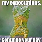 Sarcastic Lizard | You have met my expectations. Continue your day with pride and joy! | image tagged in sarcastic lizard | made w/ Imgflip meme maker