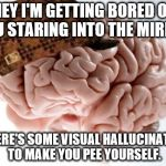 Why you see Bloody Mary. | HEY I'M GETTING BORED OF YOU STARING INTO THE MIRROR SO HERE'S SOME VISUAL HALLUCINATIONS TO MAKE YOU PEE YOURSELF. | image tagged in memes,scumbag brain,science | made w/ Imgflip meme maker