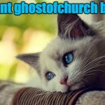 We lost an amazing IMGflip user: RIP ghostofchurch, 2016-17 | I want ghostofchurch back | image tagged in memes,first world problems cat,ghostofchurch,myrianwaffleev,deleted accounts,imgflip users | made w/ Imgflip meme maker