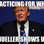 Hands up | PRACTICING FOR WHEN MUELLER SHOWS UP | image tagged in donald trump tiny hands,donald trump,arrest,mueller time,trump russia collusion,maga | made w/ Imgflip meme maker