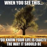 Tree of Life | WHEN YOU SEE THIS... YOU KNOW YOUR LIFE IS EXACTLY THE WAY IT SHOULD BE | image tagged in tree of life | made w/ Imgflip meme maker