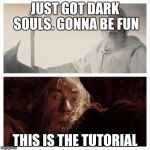 Dark Souls 2 | JUST GOT DARK SOULS. GONNA BE FUN THIS IS THE TUTORIAL | image tagged in dark souls 2 | made w/ Imgflip meme maker