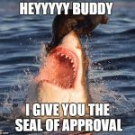 Travelonshark Meme | HEYYYYY BUDDY I GIVE YOU THE SEAL OF APPROVAL | image tagged in memes,travelonshark | made w/ Imgflip meme maker