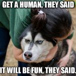 Really, human? | GET A HUMAN, THEY SAID IT WILL BE FUN, THEY SAID. | image tagged in really human? | made w/ Imgflip meme maker