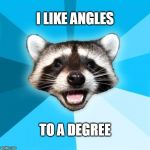 Does that make me a trigsexual? | I LIKE ANGLES TO A DEGREE | image tagged in memes,lame pun coon | made w/ Imgflip meme maker
