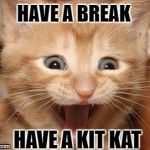 KitKat's New Promotional Campaign Manager!  | HAVE A BREAK HAVE A KIT KAT | image tagged in memes,excited cat,kitkat,joke,cute | made w/ Imgflip meme maker