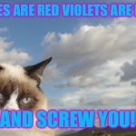 Grumpy Cat Sky Meme | ROSES ARE RED VIOLETS ARE BLUE AND SCREW YOU! | image tagged in memes,grumpy cat sky,grumpy cat | made w/ Imgflip meme maker