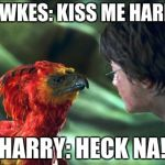 Phoenix Harry potter | FAWKES: KISS ME HARRY HARRY: HECK NA! | image tagged in phoenix harry potter | made w/ Imgflip meme maker