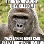 Har | I DONT KNOW WHY THEY KILLED ME I WAS TAKING MORE CARE OF THAT LADYS KID THAN HER | image tagged in har | made w/ Imgflip meme maker