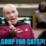 I just saw an advert on TV for this... | SOUP FOR CATS?! | image tagged in memes,picard wtf,soup for cats,cats,animals,cat food | made w/ Imgflip meme maker
