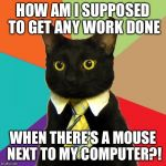 Business Cat Meme | HOW AM I SUPPOSED TO GET ANY WORK DONE WHEN THERE'S A MOUSE NEXT TO MY COMPUTER?! | image tagged in memes,business cat | made w/ Imgflip meme maker