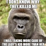 Har | I DONT KNOW WHY THEY KILLED ME I WAS TAKING MORE CARE OF THE LADY'S KID MORE THAN HER | image tagged in har | made w/ Imgflip meme maker
